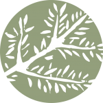 Branch_Icon_500