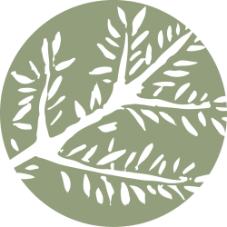 Branch_Icon_500