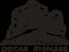 OBM_Simple_Logo_500